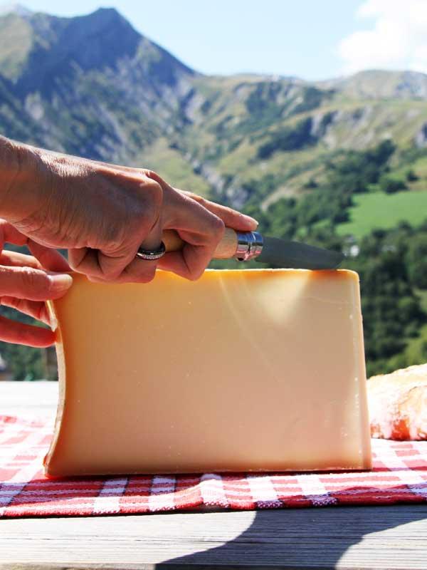 fromage vacances montagne