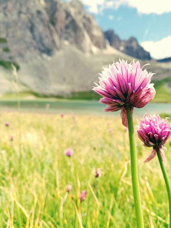 rando montagne lac cerces valloire